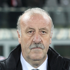 famous quotes, rare quotes and sayings  of Vicente del Bosque
