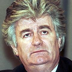famous quotes, rare quotes and sayings  of Radovan Karadzic