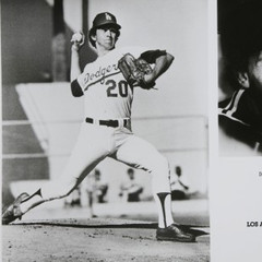 famous quotes, rare quotes and sayings  of Don Sutton