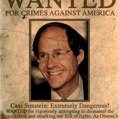 famous quotes, rare quotes and sayings  of Cass Sunstein