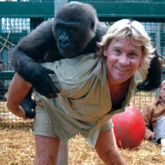 Top 30 Quotes Of Steve Irwin Famous Quotes And Sayings Inspringquotes Us
