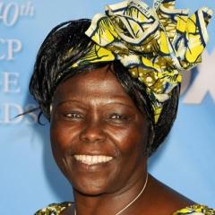 famous quotes, rare quotes and sayings  of Wangari Maathai
