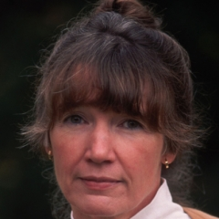 famous quotes, rare quotes and sayings  of Anne Tyler