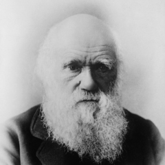 famous quotes, rare quotes and sayings  of Charles Darwin