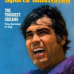 famous quotes, rare quotes and sayings  of Joe Kapp