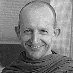 famous quotes, rare quotes and sayings  of Ajahn Amaro