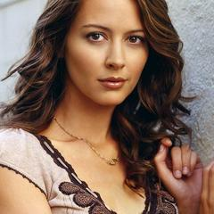 famous quotes, rare quotes and sayings  of Amy Acker