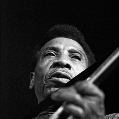 famous quotes, rare quotes and sayings  of T-Bone Walker
