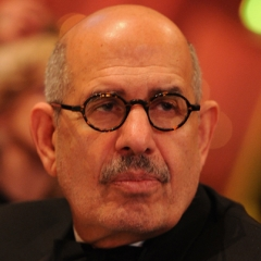 famous quotes, rare quotes and sayings  of Mohamed ElBaradei