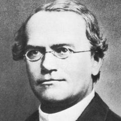 famous quotes, rare quotes and sayings  of Gregor Mendel