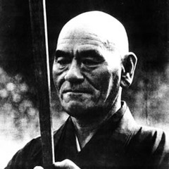 famous quotes, rare quotes and sayings  of Taisen Deshimaru