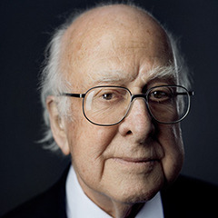 famous quotes, rare quotes and sayings  of Peter Higgs