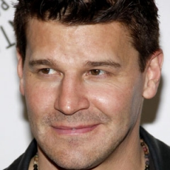 famous quotes, rare quotes and sayings  of David Boreanaz