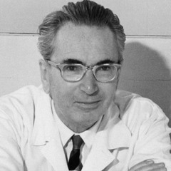 famous quotes, rare quotes and sayings  of Viktor E. Frankl