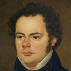 famous quotes, rare quotes and sayings  of Franz Schubert