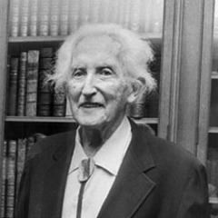 famous quotes, rare quotes and sayings  of Erik Erikson