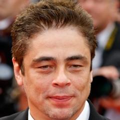 famous quotes, rare quotes and sayings  of Benicio Del Toro