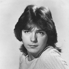 famous quotes, rare quotes and sayings  of David Cassidy
