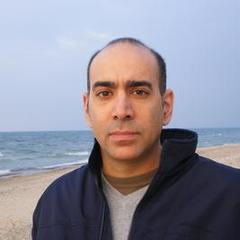 famous quotes, rare quotes and sayings  of Ali Abunimah