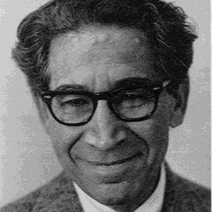 famous quotes, rare quotes and sayings  of Leon Festinger