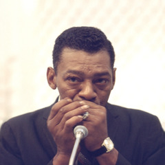 famous quotes, rare quotes and sayings  of Little Walter