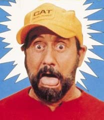 famous quotes, rare quotes and sayings  of Ray Stevens
