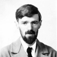 famous quotes, rare quotes and sayings  of D. H. Lawrence