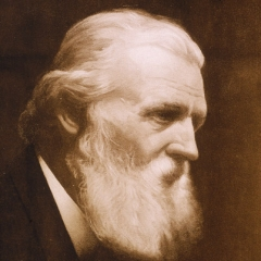 famous quotes, rare quotes and sayings  of John Muir