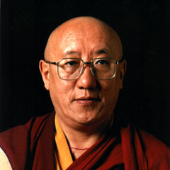 famous quotes, rare quotes and sayings  of Bokar Rinpoche