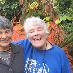 famous quotes, rare quotes and sayings  of Dervla Murphy