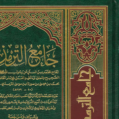 famous quotes, rare quotes and sayings  of Muhammad ibn Isa at-Tirmidhi