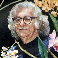 famous quotes, rare quotes and sayings  of Roberto Burle Marx
