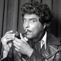 famous quotes, rare quotes and sayings  of Iceberg Slim