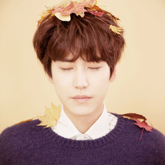 famous quotes, rare quotes and sayings  of Cho Kyuhyun