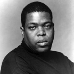 famous quotes, rare quotes and sayings  of Hilton Als