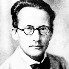 famous quotes, rare quotes and sayings  of Erwin Schrodinger
