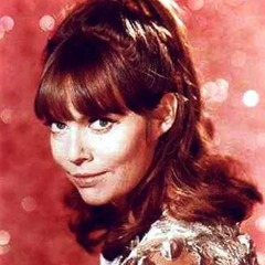 famous quotes, rare quotes and sayings  of Barbara Feldon