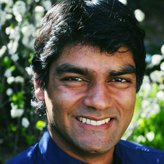 famous quotes, rare quotes and sayings  of Raj Patel
