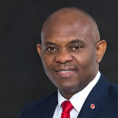 famous quotes, rare quotes and sayings  of Tony Elumelu