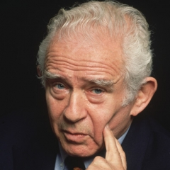 famous quotes, rare quotes and sayings  of Norman Mailer