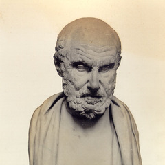 famous quotes, rare quotes and sayings  of Chrysippus