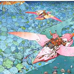famous quotes, rare quotes and sayings  of Jean Giraud