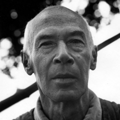 famous quotes, rare quotes and sayings  of Henry Miller