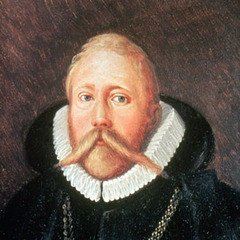 famous quotes, rare quotes and sayings  of Tycho Brahe