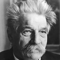 famous quotes, rare quotes and sayings  of Albert Schweitzer