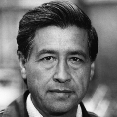 famous quotes, rare quotes and sayings  of Cesar Chavez