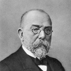 famous quotes, rare quotes and sayings  of Robert Koch