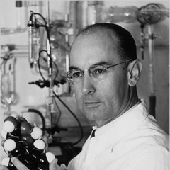 famous quotes, rare quotes and sayings  of Albert Hofmann