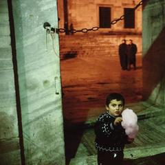 famous quotes, rare quotes and sayings  of Alex Webb