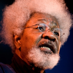 famous quotes, rare quotes and sayings  of Wole Soyinka